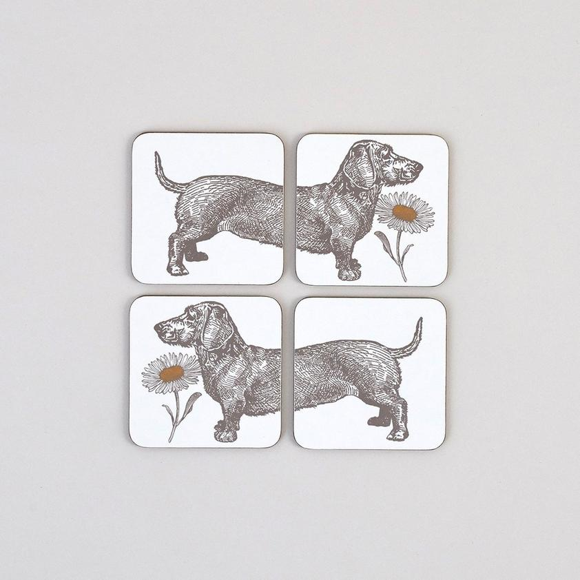 dog and daisy coasters
