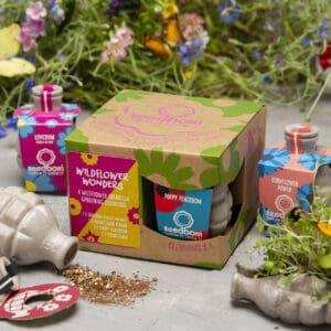 wildflower wonders seedbom gift box