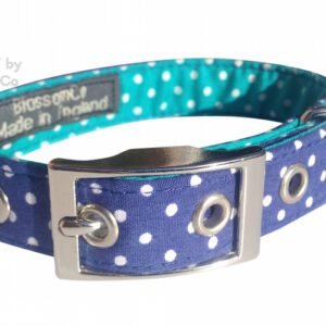 bertie dog collar by blossomco