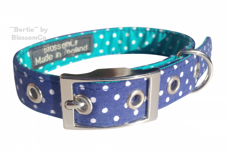 bertie dog collar by blossomco
