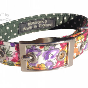 eva dog collar by blossomco