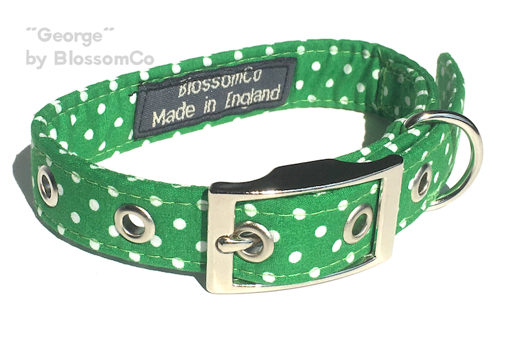 George dog collar by blossomco