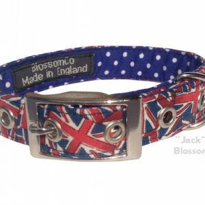 Jack dog collar by blossomco
