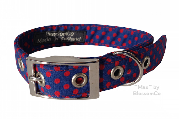 max dog collar by blossomco