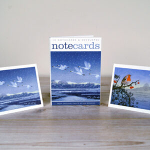 Snow Flight & Song of the Winter Solstice notecards by niki bowers