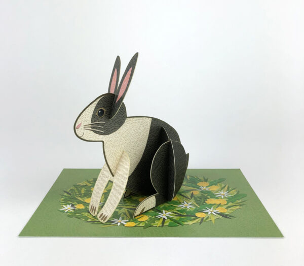 Pop-Out Rabbit by Alice Melvin