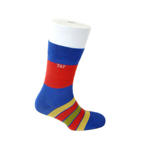 TYLER & TYLER THICK RICH COTTON SOCKS – KALEIDOSCOPE BLUE