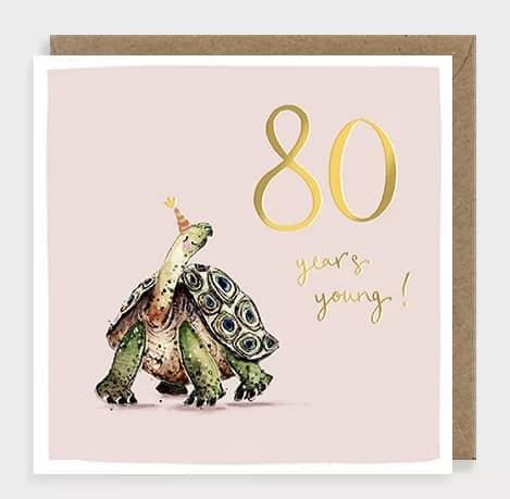 Tortoise 80 by louise mulgrew