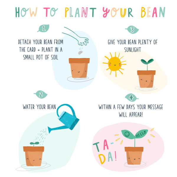 How to plant your bean card by lucy and lolly