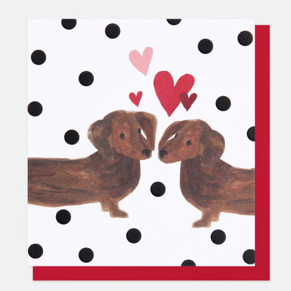 Sausage dog love card by louise mulgrew