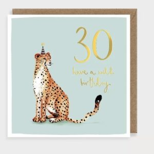 30 cheetah by louise mulgrew