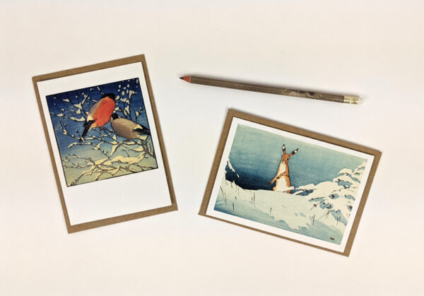 10 notecards with white envelopes. Artwork by Angela Harding. Printed in the UK.