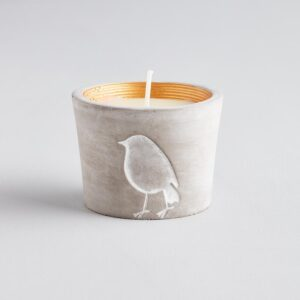 Inspiritus Scented Winter Woodland Robin Pot Candle by ST Eval