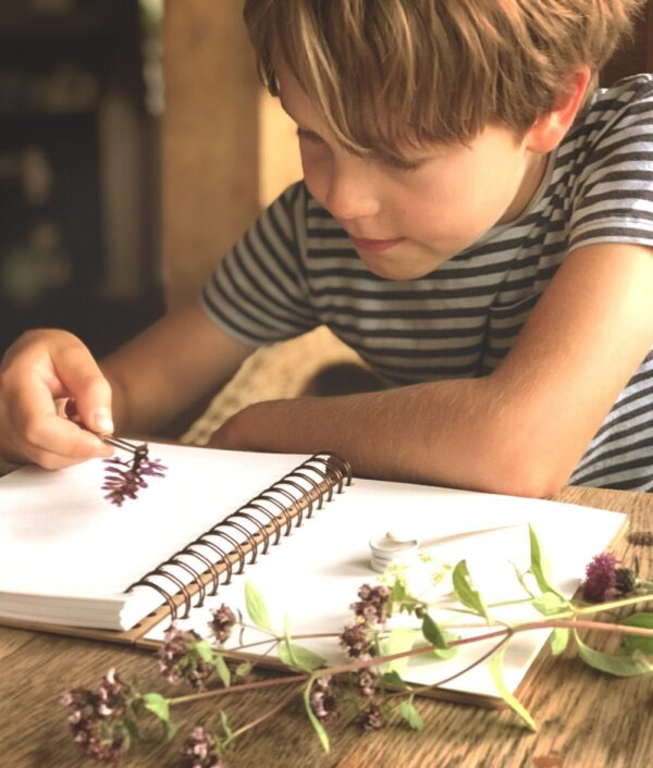 The Herbarium Kit by The Den Kit Company